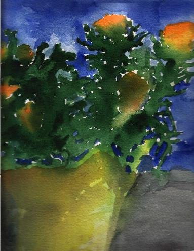 Another watercolor I did back in my undergrad days of a flower pot. I went a little crazy with this one.