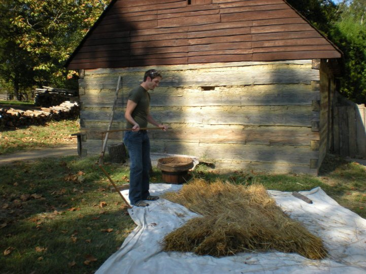 Me, threshing wheat at Colonial Williamsburg.